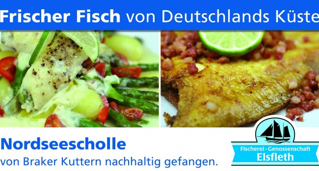 Fischerei-Genossenschaft Elsfleth e. G.